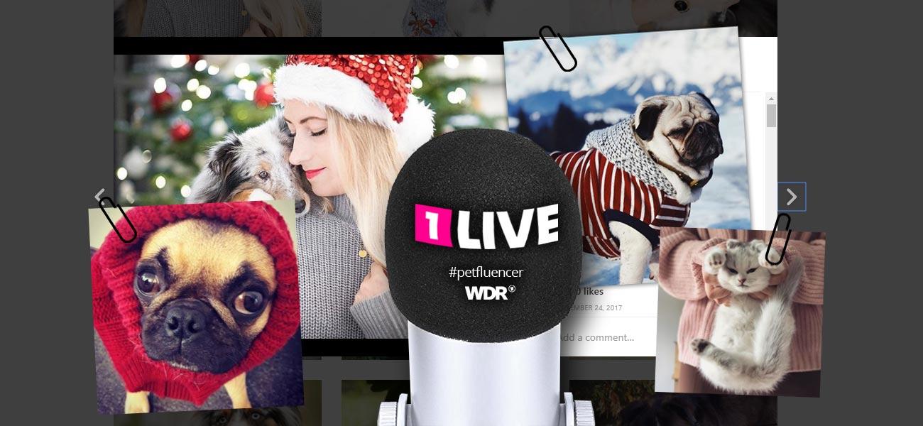 Petfluencer! Katze und Hund im Social Media Marketing - 1LIVE / WDR Interview