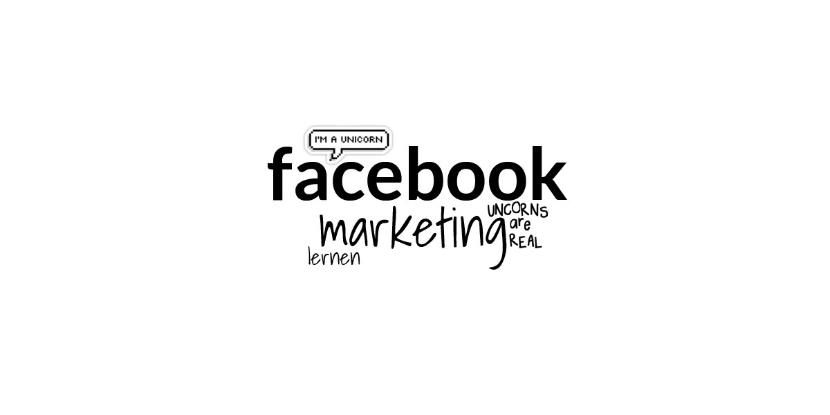 Facebook Marketing Online Kurs: Ad und Fans Crashkurs für Social Media Manager